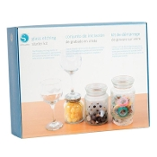 GLASS ETCHING STARTER KIT - Silhouette